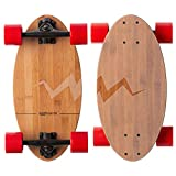 Big Boy Longboard Skateboards Review and Comparison