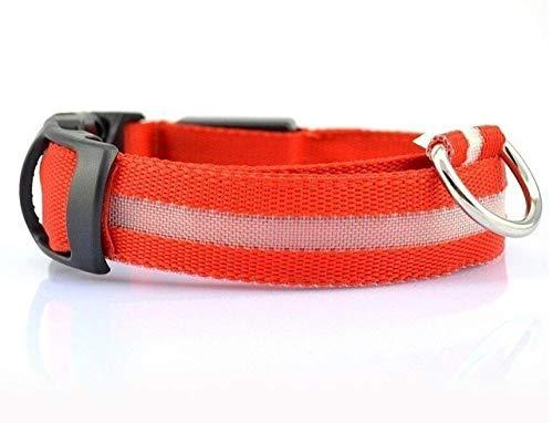 ZYYC Collar de Perro con luz LED Collar de Nailon para Mascotas Seguridad Nocturna Parpadeante Que Brilla en la Oscuridad Correa para Perros Collares Luminosos Fluorescentes para Perros-Red_XS