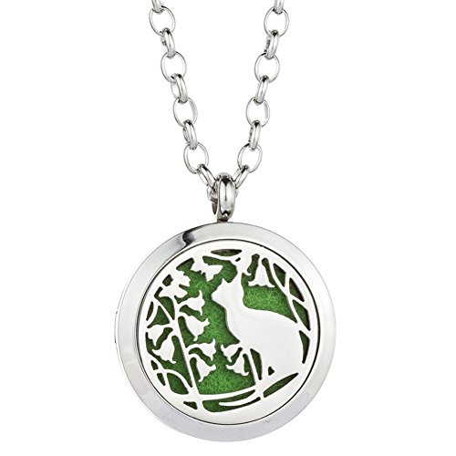 GelConnie Cat Essential Oil Diffuser Necklace Animal Perfume Pendant Stainless Steel Aromatherapy Locket for Women, Wife CSFL365-1-1