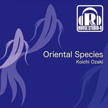 Oriental Species