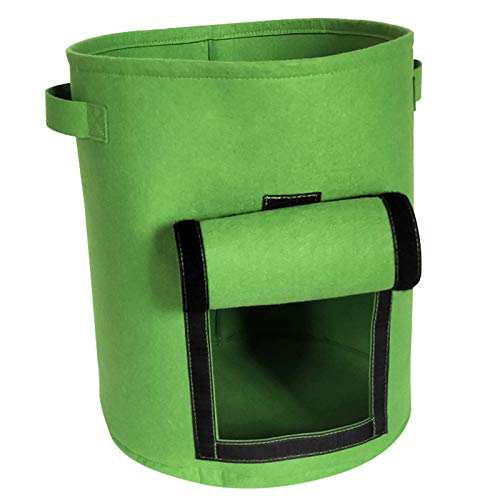 DQWGSS 2 Potato Planting Bags, Vegetable Planting Bags Made of Non-Woven Fabric, with Handles And Ring Windows, Warm, Moisture-Proof And Breathable (Fruit Green),M
