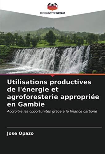Utilisations productives de l'énergie et agroforesterie appropriée en Gambie: Accroître les opportunités grâce à la finance carbone