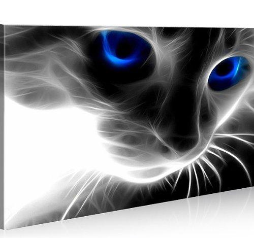 islandburner Bild Bilder auf Leinwand Magic Cat 1p Katze XXL Poster Leinwandbild Wandbild Dekoartikel Wohnzimmer Marke islandburner