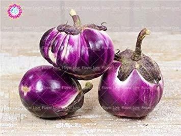 VISTARIC Bourgogne: 200 Pcs Black Pearl tomate semences Balcon légumes Bonsai plantes en pot de tomate Sweet Seeds Fruit Légumes Graines jardin Bourgogne