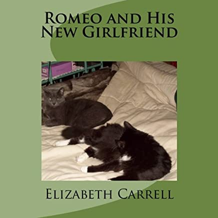 Romeo and His New Girlfriend (A Cat Named Romeo Book 2)