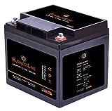 LiFePO4 Akku 12V 50Ah mit BMS (Batterie Management System), Bluetooth:ohne Bluetooth