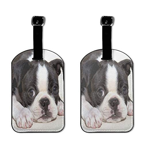 Cute French Bulldog Luggage Tag Funny Puppy Dog Print PU Leather Suitcases ID Identifier Baggage Label with Privacy Cover for Travel Bag Suitcase, Set of 2
