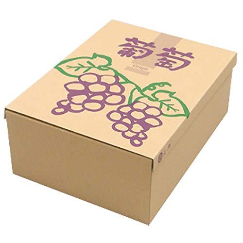【メーカー直送品のため代引不可】サービスぶどう 100セット (ぶどう箱 フルーツ用 果物用 ギフトボックス ギフト箱 贈答用 箱)