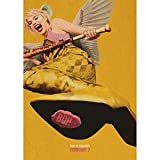 AOXULIU Cuadro sobre Lienzo 30x45cm Sin Marco Aves De Presa Cartel Bar Pared Arte Impresión Lienzo Impresiones Decoración Nórdica Hogar