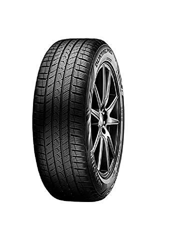 Vredestein 81889 Neumático 225/65 R17 106V, Quatrac Pro Xl para 4X4, Todas Las Temporadas