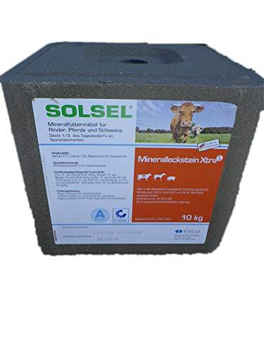 Solsel Mineralleckstein Extra (mit Kupfer) 10kg