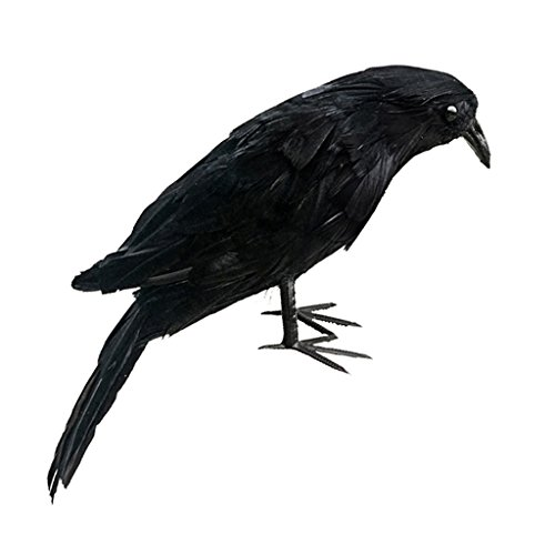 VANKOA - Cuervos pequeños de Plumas para Halloween, Color Negro, para decoración de Halloween, decoración de pájaros, 5 tamaños, Cuervos de pie y voladores, Negro, 28 cm