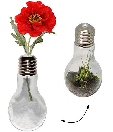alles-meine.de GmbH 1 Stück _ Dekoglas / Glas -  Glühbirne - Lampe - durchsichtig / transparent  - Vase - Hydrokultur - je 0,45 Liter - Flaschengarten Biosphäre / autarkes Ökos..