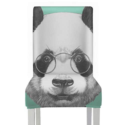 Protector de asiento de silla de comedor Dressed Up Hipster Panda con gafas Fundas de asiento de silla de comedor estampadas Fundas lavables extraíbles elásticas de poliéster para comedor Sillas de m