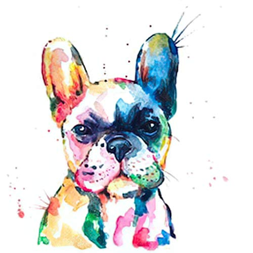 5D Diamond Painting,Adult Painting Kits French Bulldog Original Watercolor Suitable as Gifts Gem Art Drill and Dot,Toys,Home Games,Home Wall Decoration,12'x16'