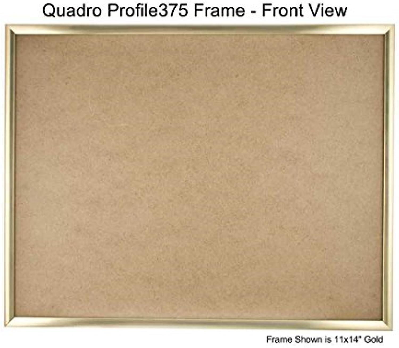 QUADRO Frames 45,7 x x x 91,4 cm Bilderrahmen, Gold, 18x36 B00XIMNEMI | Qualitativ Hochwertiges Produkt  55df11