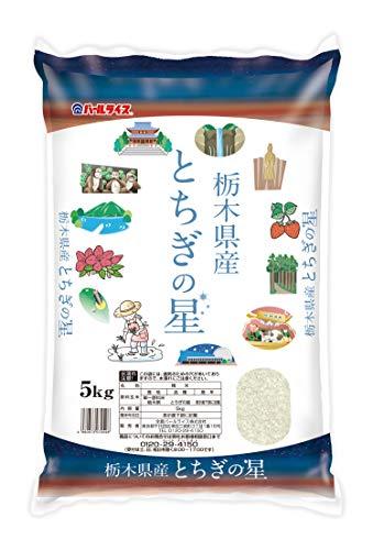 【精米】栃木県産 白米 とちぎの星 5kg 令和2年産