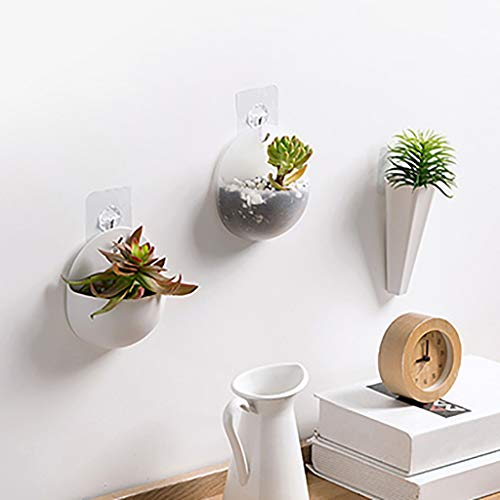 Small wall-mounted planter