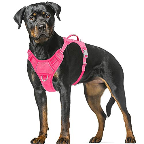 BARKBAY No Pull Dog Harness Large Step in Reflective Dog Harness with Front Clip and Easy Control Handle for Walking Training Running with ID tag Pocket(Pink,XL)