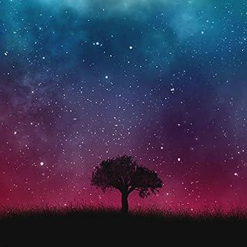 Beautiful Night (Into Beautiful Day)