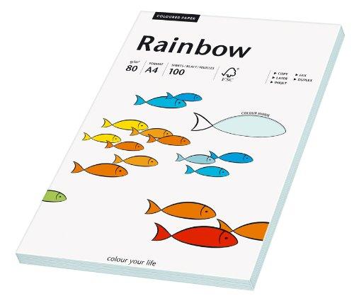 Papyrus 88042697 Druckerpapier Rainbow 80 g/m², A4 100 Blatt hellblau