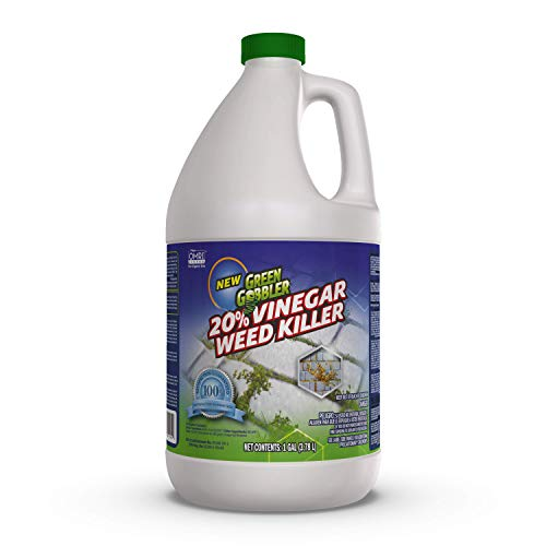 Green Gobbler Vinegar Weed & Grass Killer | Natural and Organic Weed & Grass Killer |1 Gallon