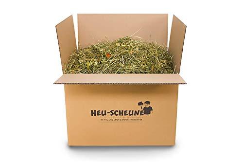 Gemüsegarten Heu der Heu-Scheune® mit Karotten, Apfel, Zucchini, Petersilienstiele, Gurken, Löwenzahn und mehr (5kg)