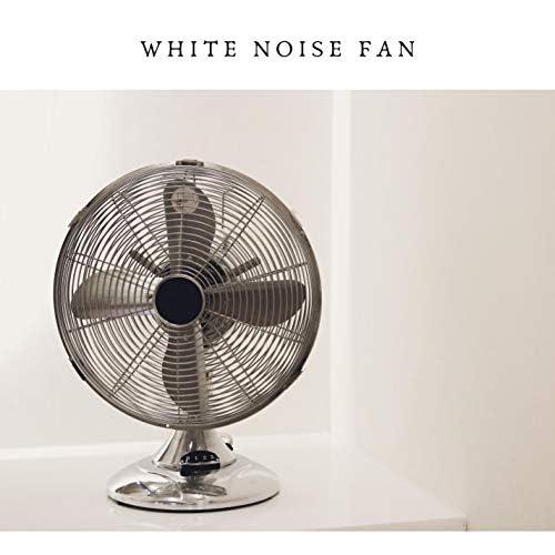 White Noise Radiance & White Noise