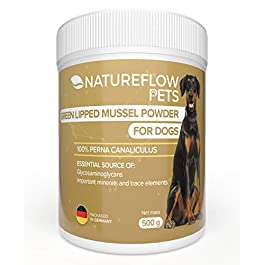 Natural Green-Lipped Mussel Powder Dog – 500 g Green-Lipped Mussel for Dogs to Support Joint Functions – Green-Lipped Mussel Extract with High Acceptance in All Dogs