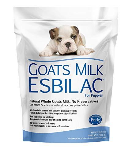 Goat's Milk Esbilac® GME Powder Milk Formula