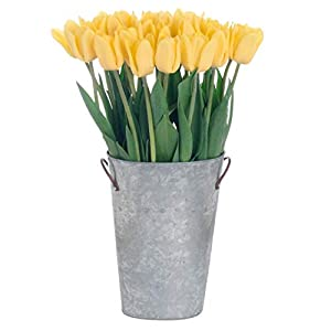 Stargazer Barn Sunny Side Up Bouquet Stems of Yellow Tulips With Galvanized Vase, 30 Count from Amazonusst1fa