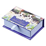 Christian Art Gifts Pass Around Card Set   Little Box of Friendship Puppies and Kittens   Encouraging Scripture Cards to Share in Box, Pack of 24