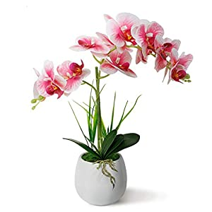 LIVILAN Fake Orchid Light Pink Orchid Silk Phalaenopsis Real Touch Flowers Artificial Flowers Arrangement Potted Orchid with White Ceramic Vase with Two Stems Orchid Plant for Home Decor Party