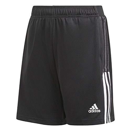 adidas, Tiro 21, Pantaloncini da Calcio