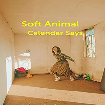 Calendar Says