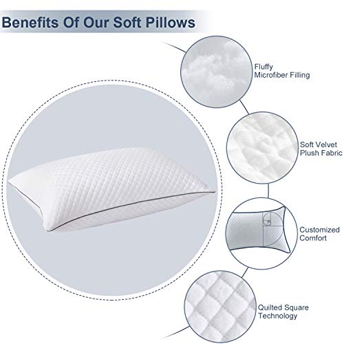 """2 Pack Pillows Queen Size for Bed Sleeping - Hotel Pillow for Side Back and Stomach Sleeper Hypoallergenic Velvet Fabric, Fluffy Down Alternative Pillow with Super Soft Microfiber Filling for Neck Pain Allergy Sufferers, 20""""x30"""" Machine Washable"""