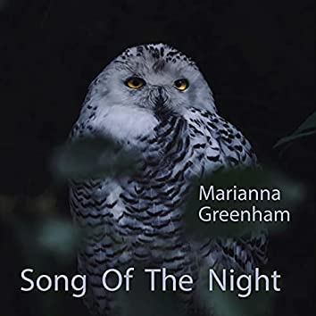 Song Of The Night (feat. Jill Cooper, Mike Hyder, Belinda Leonard & Rinanda)