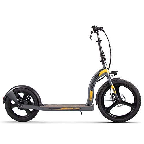 RICH BIT H100 Scooter elettrico 36V 350W 10.2Ah Scooter da città pieghevole da 20-16 pollici per adulti e bambini (grigio)