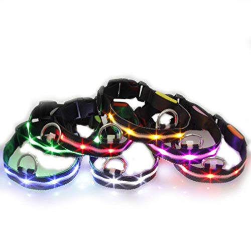 CSMZ Puppy Halsband en Kraag LED Collar LED verlichting Kleine en Middelgrote Hond Flashing Silk Screen Lights met Cool Black Side Hyena touw, Pet Supplies (Color : Pink [black webbing], Size : L)