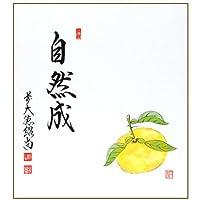 色紙画賛 直筆 「自然成」 橋本紹尚師・奈良 柳生芳徳禅寺
