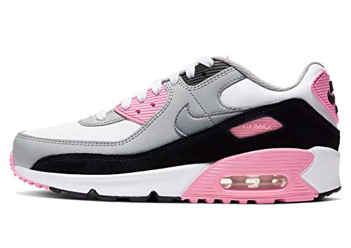 Nike Air Max 90 LTR GS Big Kids Grey/Pink CD6864-104 (Size: 4.5Y)
