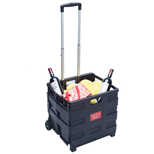 DXP Transport Trolley klappbar bis 35kg Einkaufstrolley Einkaufswagen Klappbox Transportwagen Shopping Trolley Faltbox Aluminium Kunststoff Schwarz WS-01