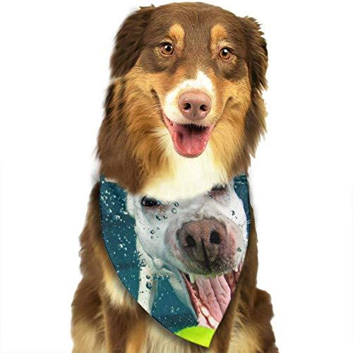 Sdltkhy Fantasy Tennis Ball in Water Fashion Dog Bandana Haustierzubehör Easy Wash Scarf