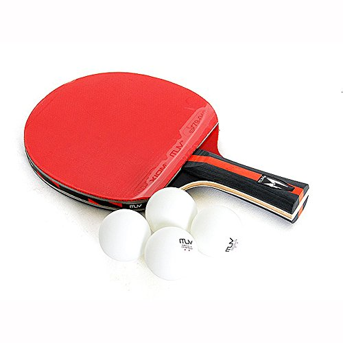 Find Bargain JISAM TRADE Champion XIOM M 2.4 S Ping Pong Racket Table Tennis Shake Hand Defensive Ty...