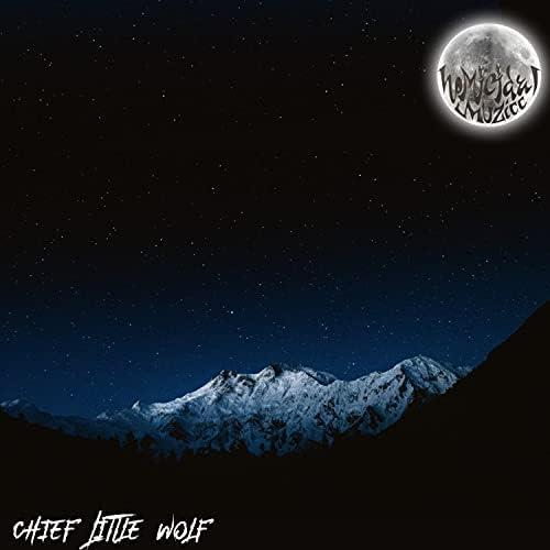 Chief Little Wolf