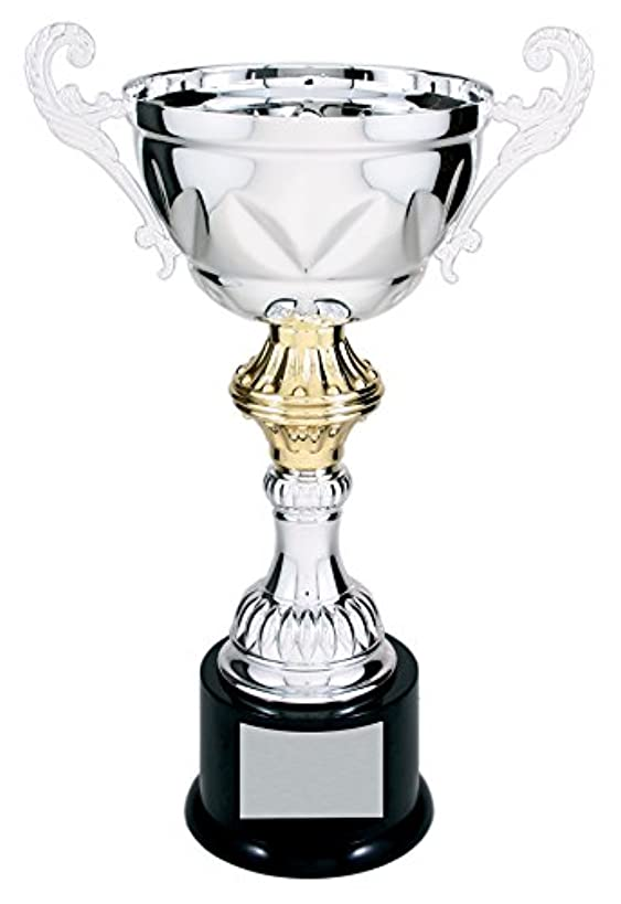 Decade Awards Cup Trophy   Silver - Gold Metal Cup Corporate Award   10 Inch Tall