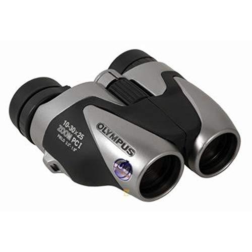Olympus 10-30 x 25 Zoom PCI - Prismático, Plata y Negro