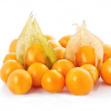 Generic Générique Physalis Graines Jardin Fruit Fleur Latern Golden Berry Tree Graines -20Pcs / pack