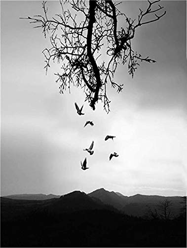 VGFTP Houten puzzel van 1000 stukjes, landschapspuzzel, zeer uitdagende volwassen en tiener casual puzzel - vogels en dode bomen