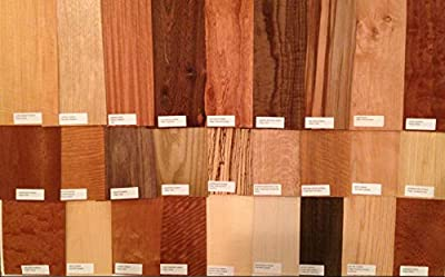 """40-6"""" x 12"""" Labeled Wood Veneer Pieces (20 Square Feet) Exotic and Domestic Marquetry Arts Crafts Pack"""